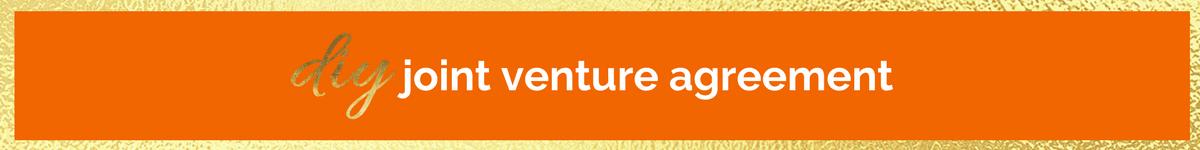 Diy Joint Venture Agreement Lisa Fraley
